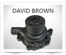 David Brown Water Pumps